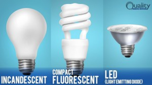 The Raleigh Home Inspector on 3 Different Types of Light Bulbs